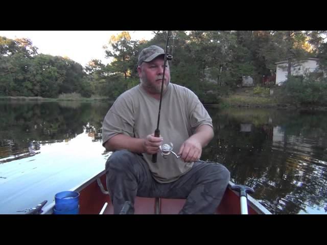 Bluegill Fishing in Florida