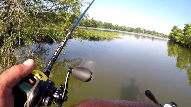Pitching For Bass Around Shallow Cover