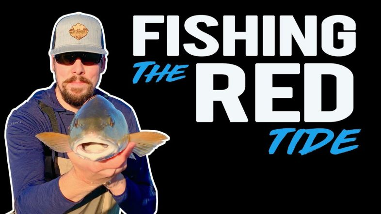 Best Bait for Redfish During Winter | Pensacola Florida