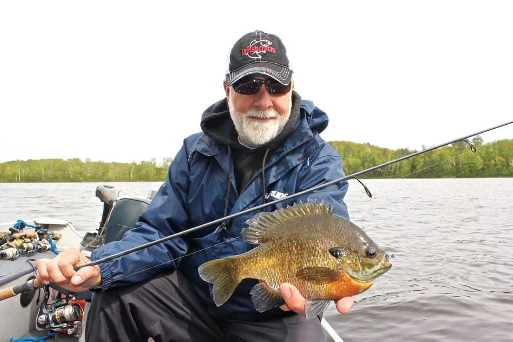 Find Your Biggest Bluegills During Summer